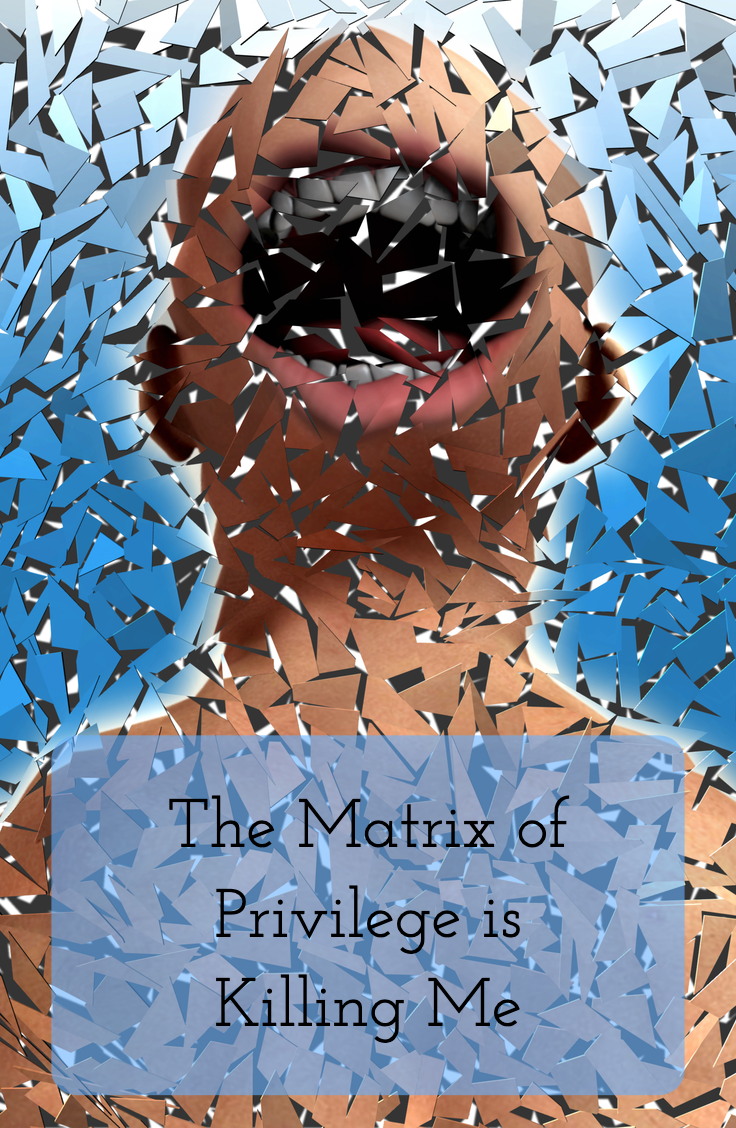 The Matrix of Privilege